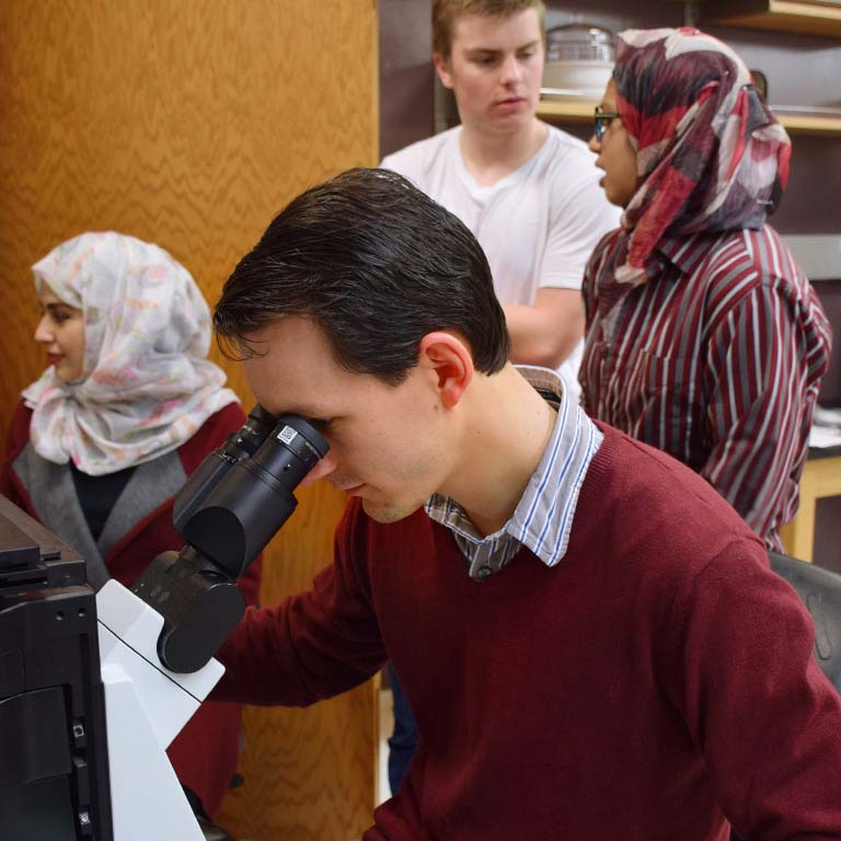 Student looks through a microscope while three others have a discussion in a bioengineering lab.