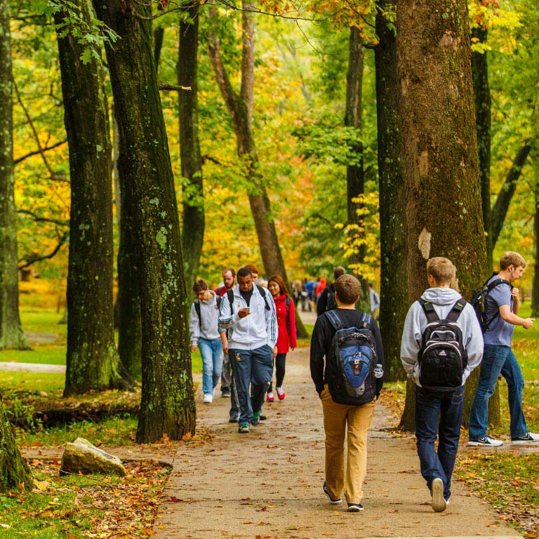 Students walk on a pathway on campus.